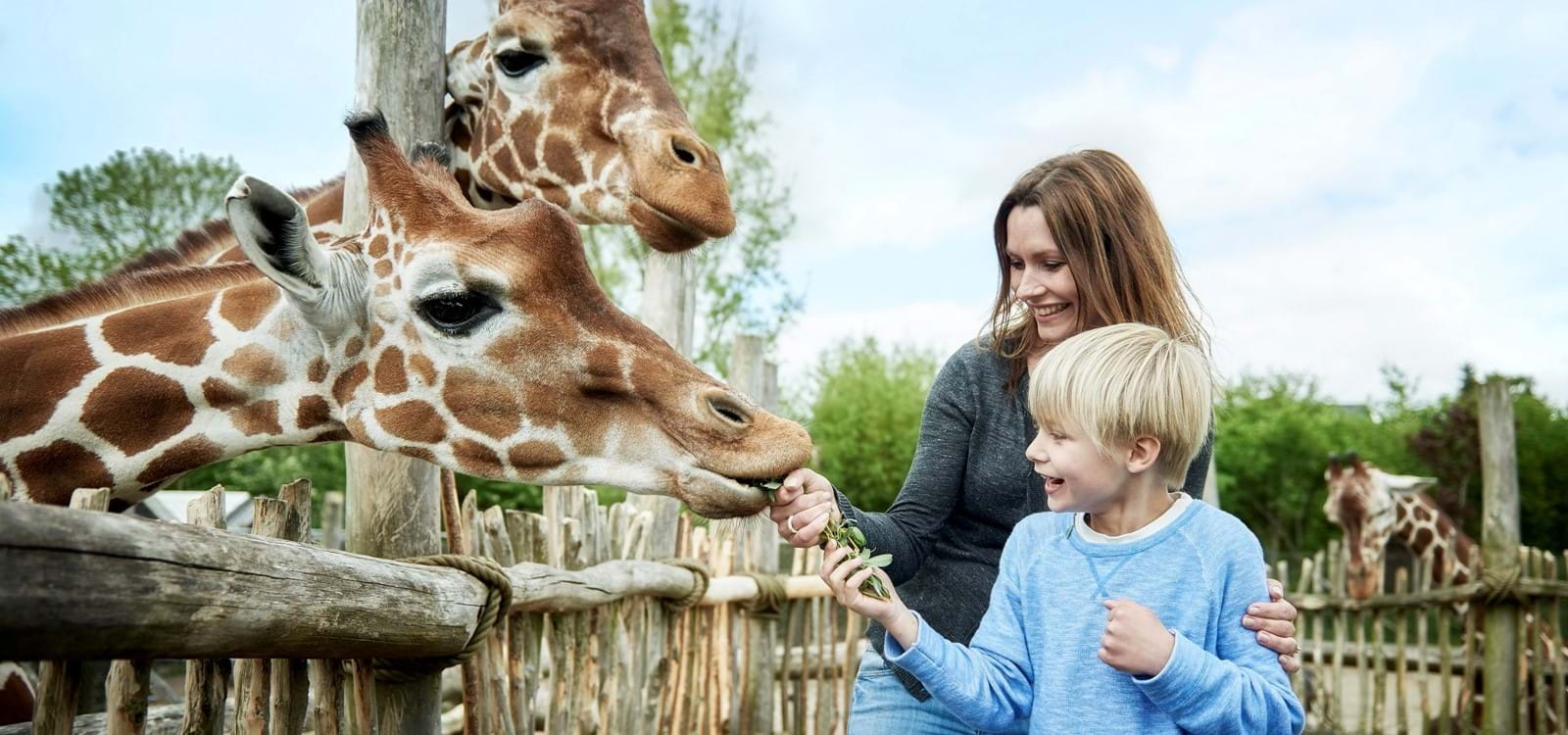 odense zoo kort tysk sex