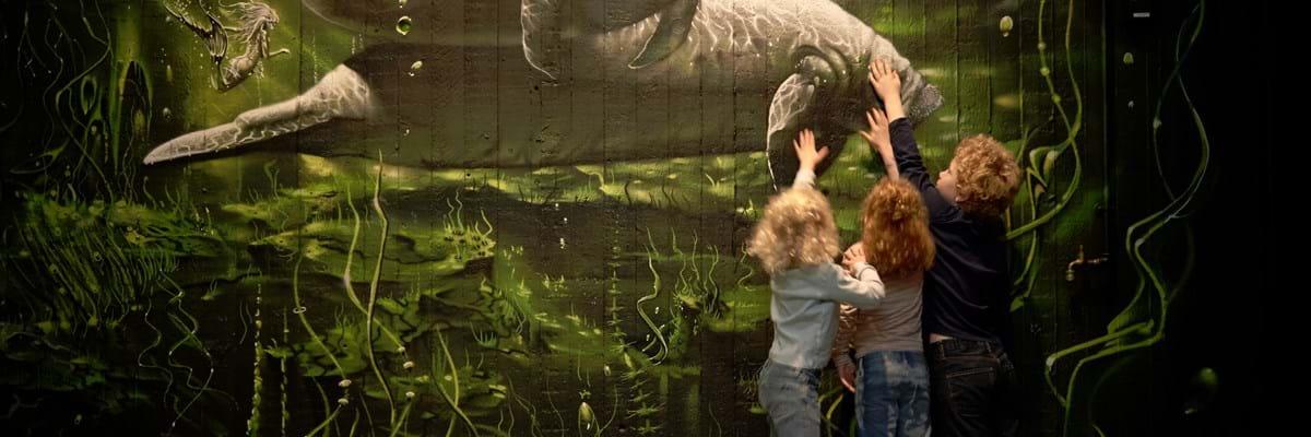 smerter ved afføring zoo aarhus