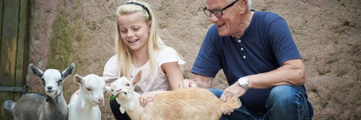 Dansk amatør rør rabat til Odense Zoo